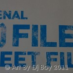El Museo's Bienal: The (S) Files 2011 Video