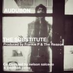 New Music: Audubon - The Substitute