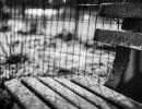 Snow - Washington Heights