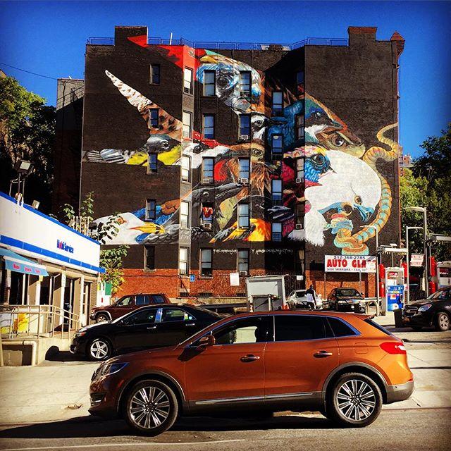 Lincoln MKX - Street ARt